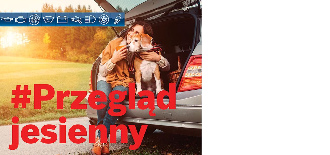 Przegląd jesienny - Sprawdź, czy jesteście bezpieczni na drodze